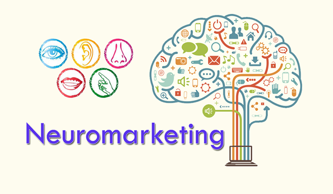 Neuromarketing , 6 principi di persuasione